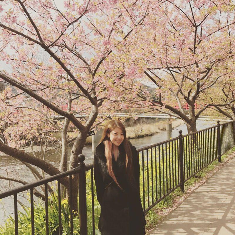 熱海【河津桜まつり】車で行ったら【伊豆高原】に駐車して行くことをオススメします♡